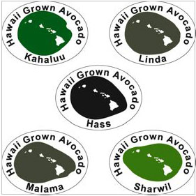 Hawaii Grown Avocado stickers