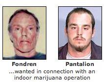 Indoor marijuana growing operation