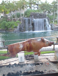 Wild boar on the rotisserie Friday, Sept. 18 at the Mealani A Taste of the Hawaiian Range.