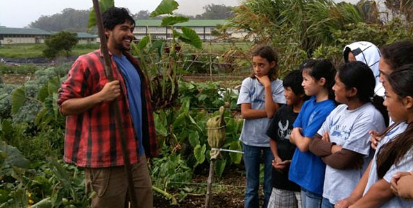 A 'Work & Learn' day will be hosted at the garden from 9 a.m. to noon on Saturday (Dec 12) where participants will plant taro and taro huli will be offered to plant in home gardens.