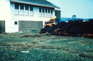 Hawaii Volcanoes National Park. 1960 eruption of Kilauea Volcano. Aa lava flow at the school in Kapoho. January 1960. Photo courtesy of USGS