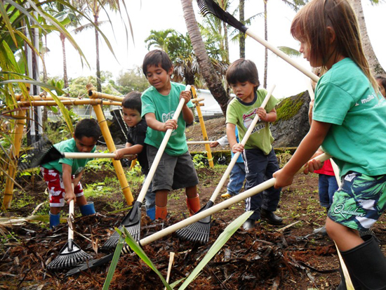 Students from Punana Leo o Hilo Preschool in Keaau prepare their school garden for planting. (Photo courtesy of the Hawaii Island School Garden Network)