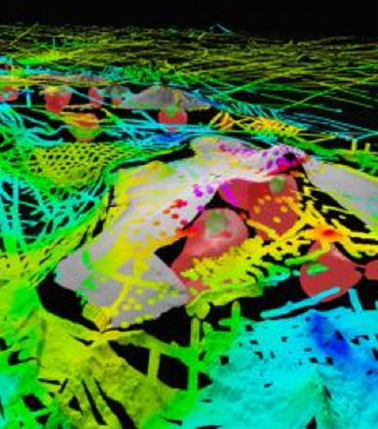 3-D view of topography and seafloor relief of Hawaiian Islands; colors show residual gravity anomaly. (Image courtesy of UH)