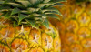 Pineapples at Makuu Farmers Market in Puna. Hawaii 24/7 File Photo
