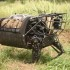 Marines test robot pack animal during RIMPAC 2014 exercises
