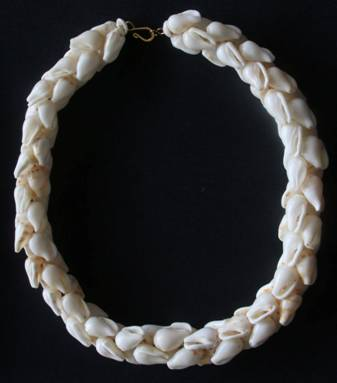 Lei created from `alilea shells
