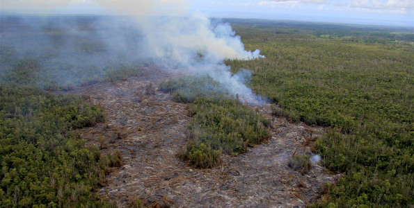 View from above the end of the June 27th lava flow, looking along its northeast trend through the Wao Kele o Puna Forest Reserve. On the afternoon of September 10, 2014, the flow front was 0.6 km (0.4 mi) from the boundary between the Forest Reserve and Kaohe Homesteads, visible at far right. Photo courtesy of USGS/HVO