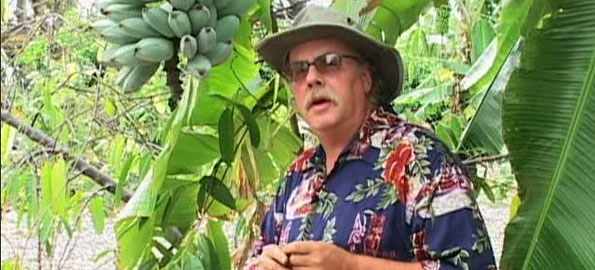 A series of new video clips intended to help local growers produce high quality tropical fruit have been uploaded to the internet.