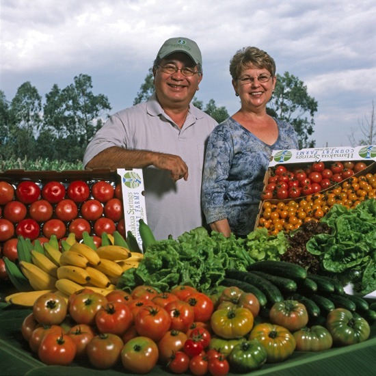 Richard and June Ha of Hamakua Springs Farm are surrounded by fresh lettuce, tomatoes, bananas, and cucumbers. (Photo courtesty of The Kohala Center)