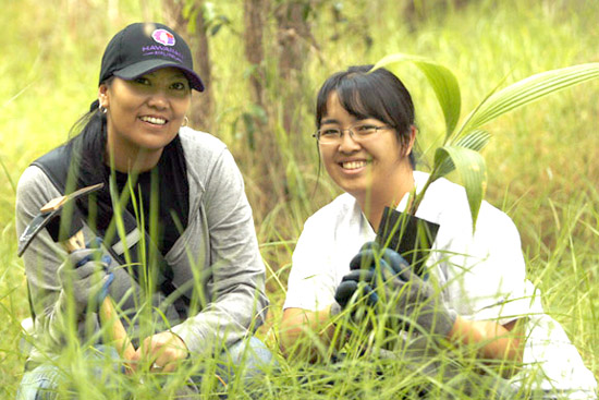 Volunteers help Nature Conservancy restore South Kona forest