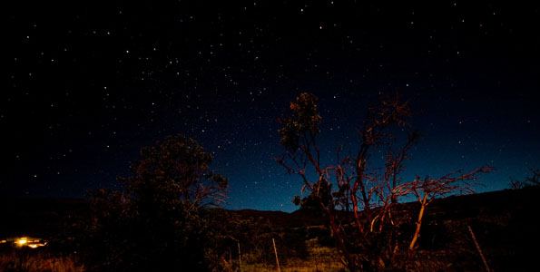 For meteor watchers there is probably no more anticipated show that the annual Leonid Meteor Shower.