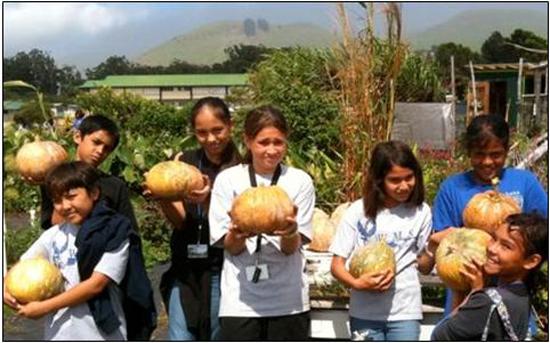 Students grow herbs for Village Burger Waimea's iced tea