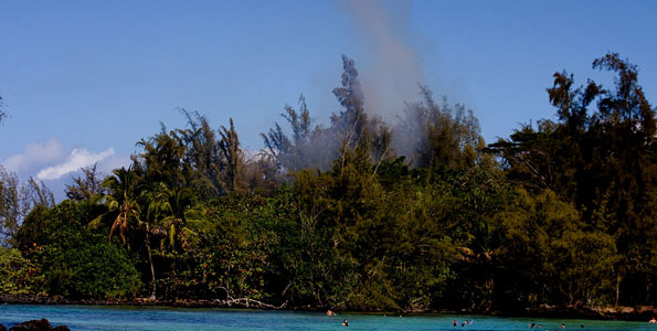 Firefighters along with Chopper One responded to a fire in the treetops at Kealoha Beach Park in Keaukaha. Photos and video.