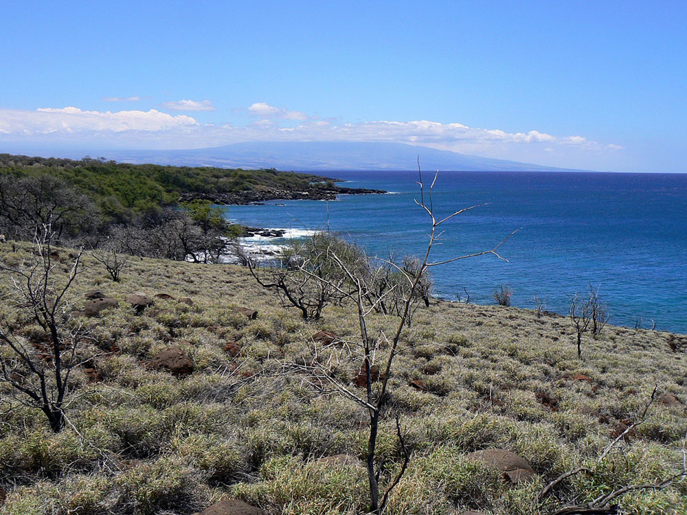 The County of Hawai'i closed escrow today on the purchase of a 151-acre oceanfront property in North Kohala known as Kaiholena North.