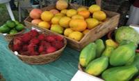 South Kona Green Market holiday feast (Nov. 21)