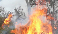 National Park Service aids county fire department
