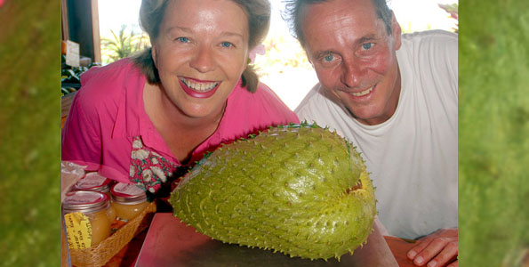 Also called Guanabana, the fruit measured 24 inches around and 11.5 inches long. Beth Smith and Ken Verosko, of South Kona Fruit Stand, are applying to the Guinness Book of Records.