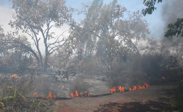 Kalapana lava update (July 30)
