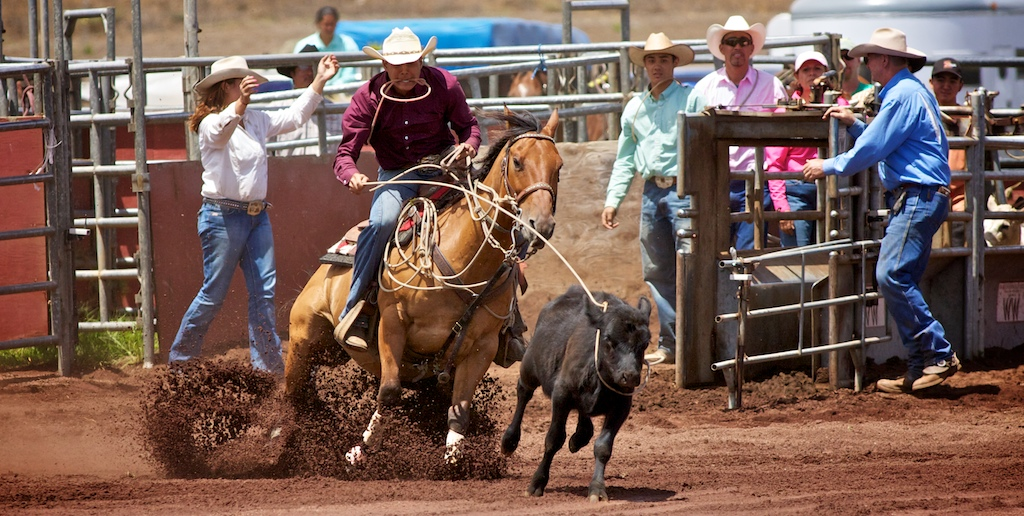 Rodeo action from the 36th Annual Parker Ranch Labor Day Scholarship Round Up Rodeo at Parker Ranch rodeo arena in Waimea Saturday (Sept 4). The action continues on Sunday with the top teams.