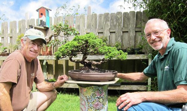 Jim Skibby, Bob and Nancy Male, members of the Waimea Bonyu Kai Bonsai Club will share a bonsai presentation on Friday, September 10, 2010 from 5:30 p.m. - 7:30 p.m. at the Donkey Mill Art Center.