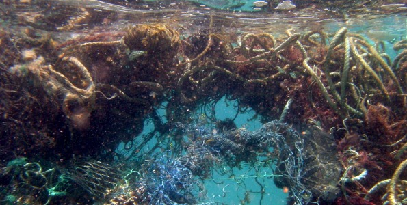 more than 740 tons of it has been removed from the waters and shorelines of the Northwestern Hawaiian Islands (NWHI) over the last 14 years