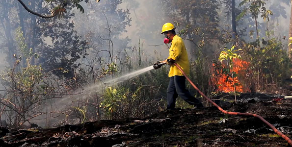 Firefighters responded to a 1:22 p.m. alarm Tuesday (July 12) to a brushfire at the North end of Beach Road in Hawaiian Paradise Park.
