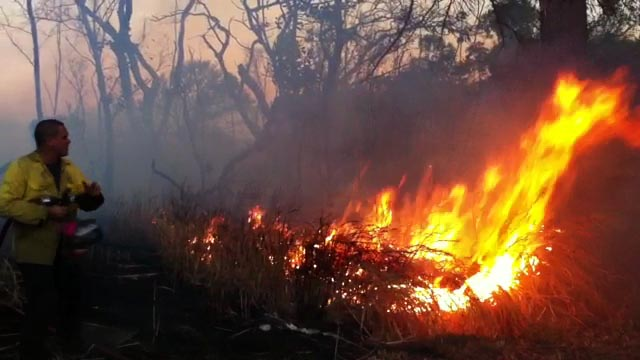 Police closed Highway 11 in Punaluu due to a brushfire which was burning on both sides of the highway Wednesday (Aug 3).