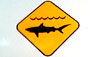 The Department of Parks and Recreation announces that Laaloa Beach Park (aka. Magic Sands) in Kona was closed Monday (Oct 24) due to a shark sighting.      The Department of Parks and Recreation and other County agencies requests the public's cooperation of this closure to help keep everyone safe.