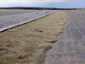 Pele's hair covers much of the ground in the area immediately downwind of the vent at Halemaumau crater. Accumulations about a meter (yard) wide are found on the windward sides of the curbs in the Halemaumau parking lot, which is closed to the public because of the ongoing volcanic hazard. USGS Photo by Matthew Patrick