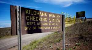Kilohana Hunter Checking Station. Hawaii 24/7 File Photo