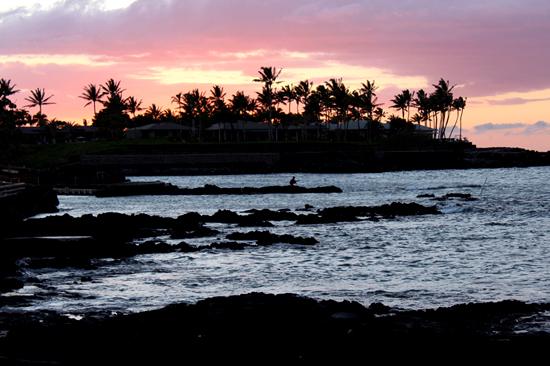 (Photo by Karin Stanton | Hawaii 24/7)