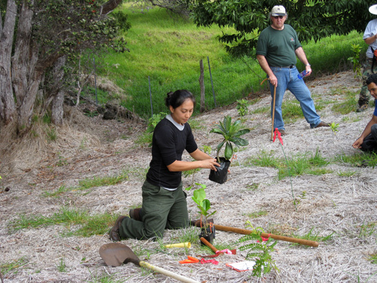Go behind the scenes with Dr. Rhonda Loh, Dr. Thane Pratt and Linda Pratt, hosted by the Hawaii Volcanoes Institute. (Photo courtesy of Hawaii Volcanoes National Park)