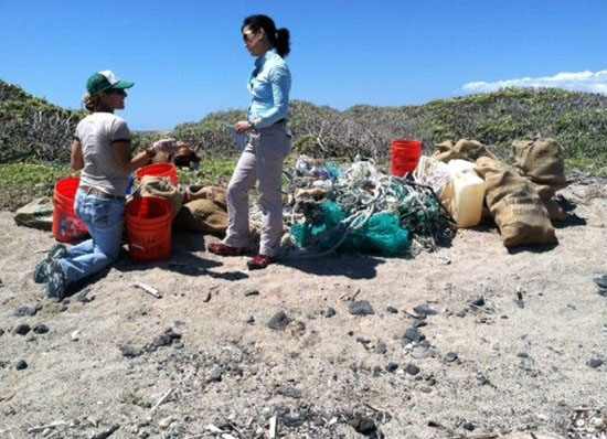 CNN correspondent Kyung Lah interviews HWF's Megan Lamson at Kamilo. (Photo courtesy of Harold Leatherman | HWF volunteer)