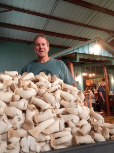 Stanga stands with freshly harvested Ali'i mushrooms (Hawaii 24/7 photo by Roya Sabri)
