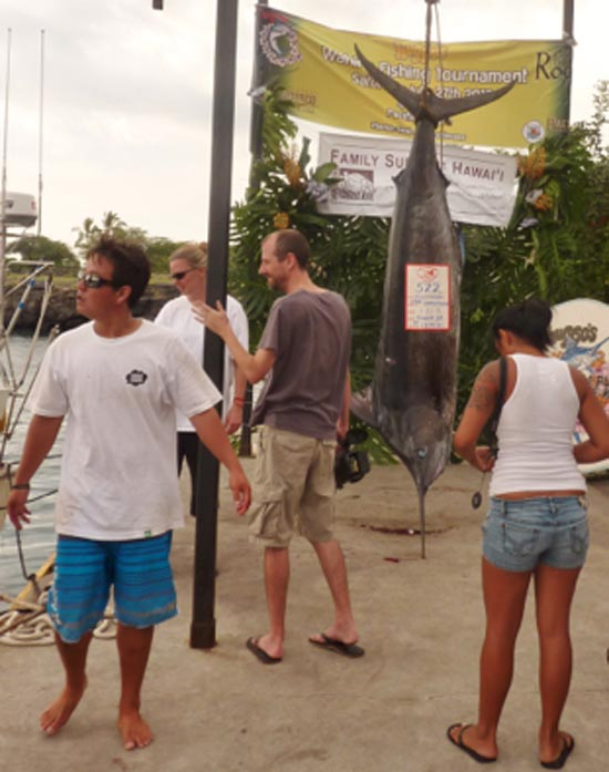 Biggest fish of the day: 522-lb. marlin (Photo courtesy of Huggo's)