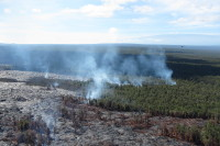 The Kahaualeʻa 2 flow remains active Wednesday (Nov 27), and continues to slowly expand into the forest northeast of Puʻu ʻŌʻō. The photo shows the main area of vegetation fires, along the north margin of the flow. Mauna Loa can be seen in the distance in the upper right. Photo courtesy of USGS/HVO