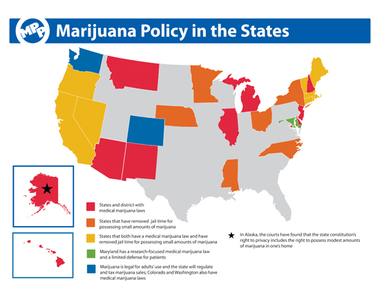 2013 Marijuana Policy in the States W IL 8_5x11