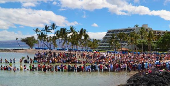 Turtle Independence Day (Photo courtesy of Mauna Lani Hotel)