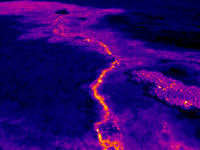 The surface flows at the front of the June 27th lava flow are fed by lava that is supplied through a lava tube that originates at the vent on Puʻu ʻŌʻō. This thermal image shows the lava tube close to Puʻu ʻŌʻō. Although the lava is several meters (yards) beneath the surface, it heats the surface sufficiently to be easily detected with thermal cameras. Photo courtesy of USGS/HVO