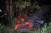 The June 27th lava flow burns vegetation as it approaches a property boundary above Pāhoa early on the morning of Tuesday, October 28, 2014. Photo courtesy of USGS/HVO