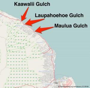 gulches-hamakua