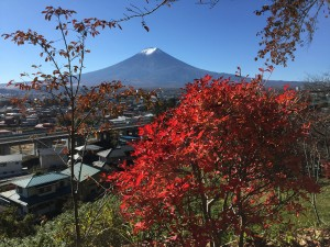 Mount Fuji, or Fuji-san as the Japanese address the mountain, is 3,776 m (12,389 ft) tall and towers above the surrounding communities. USGS photo.