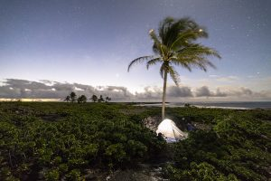 Tent camping at 'Āpua Point along the coast at Hawai'i Volcanoes National Park. Photo/Jacob W. Frank