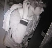 Surveillance image of burglary suspect