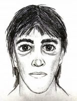 Sketch of Puna robbery suspect