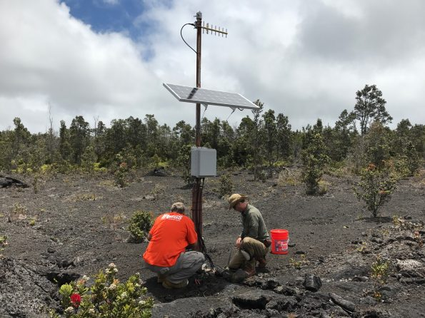 USGS Hawaiian Volcano Observatory field engineers upgrade a tiltmeter on Kīlauea Volcano's East Rift Zone. The upgrade consisted of switching the old analog instrument to a newer digital model. This tiltmeter is used to track magma movement within the volcano. USGS photo by K. Kamibayashi.
