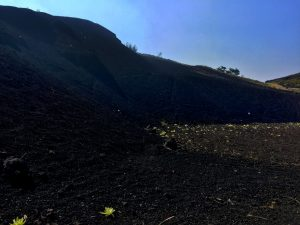 A close-up of the cinder cone. DLNR Photo