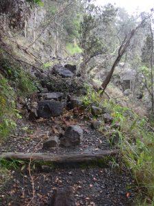Boulders blocking Byrons ledge at Kilauea Iki Trail. NPS Photo