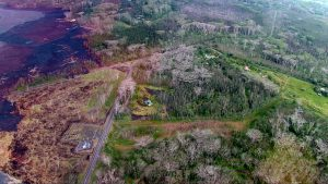 Aerial view of Lava Tree State Monument on right with Kilauea Eruption lava flow crossing Pohoiki Road on the left on June 21, 2018. Image courtesy of DLNR.